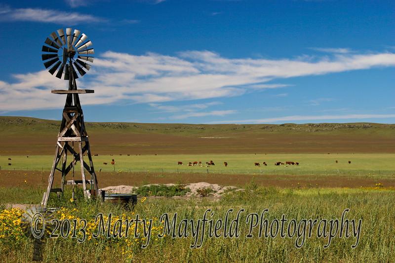Windmill West of Capulin IMG_4015