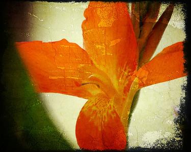 Textured Flower 2