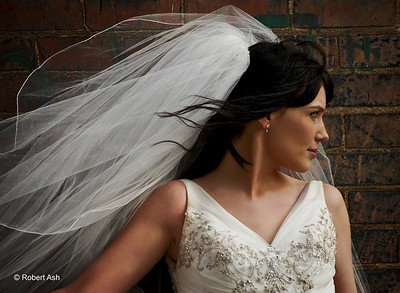 "Out of 190 images submitted to David for critique during the Master Class, this image is one of only 7 attendee images that David posted to his blog summarizing the week. ""I love this first image that Robert took during our Tuesday shoot.  I love the blowing of the hair and veil.  The bride's simple expression, the background, and soft lighting all make for a great shot."" --David Ziser, Master Photographer"