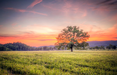 Sunset in Cades Cove, in the Great Smoky Mountains National Park