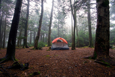 Tent in the fog, taken at Roan High Knob along the Appalachian Trail