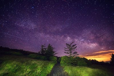 Night on the Appalachian Trail near Roan Mountain Tennessee