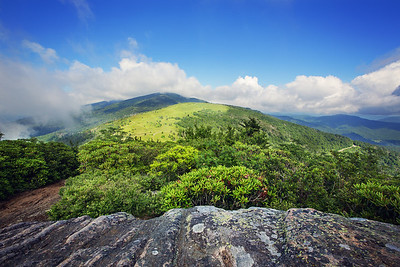 The view from Janes Bald, on the Appalachian Trail near Roan Mountain Tennessee