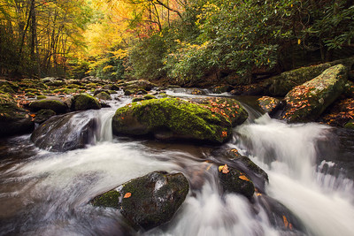 Little Prong River in the Tremont area of the Great Smoky Mountains National Park