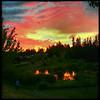 Llama Lake Sunset