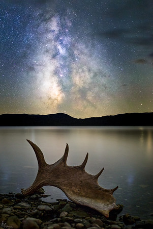 The Milky Way makes a dramatic background for a moose antler sitting on the edge of Third Connecticut Lake. Captured during our workshop in 2016.