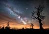 Nature & Man: Iridium Flare, Milky Way and Light Pollution
