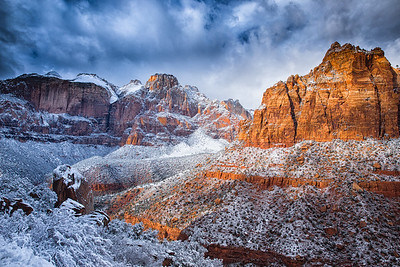 The Zion in Winter