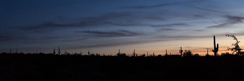 Lost Dutchman State Park, Apache Junction, Arizona, USA