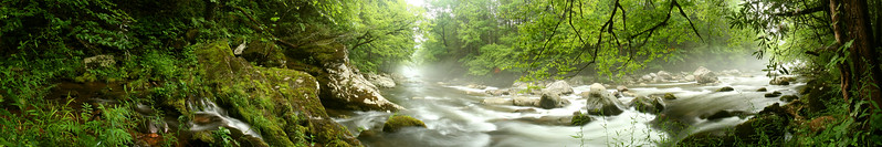 Greenbrier, Great Smoky Mountains National Park, Tennessee, USA