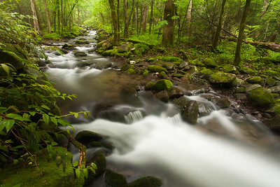 Roaring Fork, Great Smoky Mountains National Park, Tennessee, USA