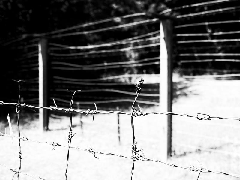 Grenzzaun damals