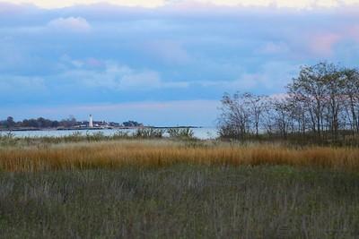 Autumn Shoreline 1112010
