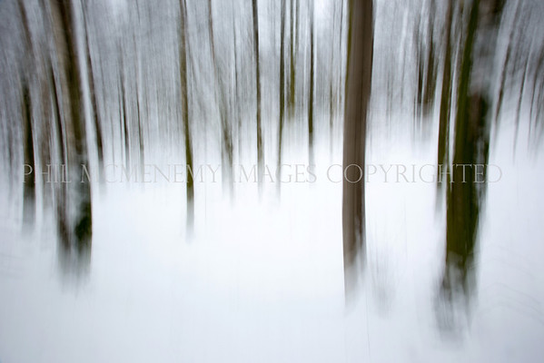 Wood Snow<br /> <br /> Winter, cold, feel it - and enjoy the sensation.