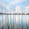 Through The Reeds<br /> <br /> Winter sky, a serrated winter sky - sliced through with willow.