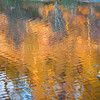Reflections: Autumn<br /> <br /> This reflection and the warmth lasted briefly before, like a will o'the wisp, was gone.