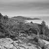 To Castle Point (i)<br /> <br /> I love our coastline, it is teeming with beauty, history and, erm, the sea!