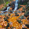 Red Pool and River<br /> <br /> Almost like gold, lets go panning for gold, lets...........