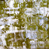 Azalea<br /> <br /> The dappled and pied reflections of azalea in the lochan