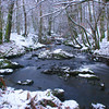 Galloway Burn - Winter<br /> <br /> I love the structure of winter shots - the raw components stripped back to reveal their true form and beauty