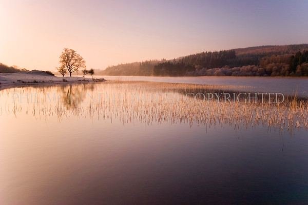 First Light (i)<br /> <br /> The first rays of sunlight splash across the scene illuminating and breathing life across the near frozen loch