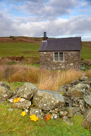 Autumn House<br /> <br /> Tiny bothy way out in the wilds - kind of totemic.