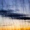 Sunset, Cloud and Grass<br /> <br /> Sunset through the shimmer of grasses blown in the breeze