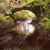 Bough, Bridge and Burn<br /> <br /> Flow, flow and flow on.........