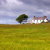 STEADING<br /> <br /> A typical Galloway steading enveloped by bruising skies and ripe swaying corn - bucolic and defitely scottish