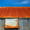 Corrugated Barn<br /> <br /> Wow, this was an awesome spring morning and me filthily tramping across fields and woods near Gatehouse of Fleet