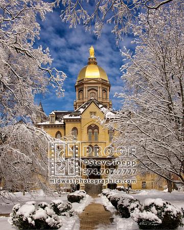 Notre Dame Scenes by Steve Toepp