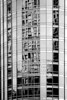 Trump Tower 313_B&W