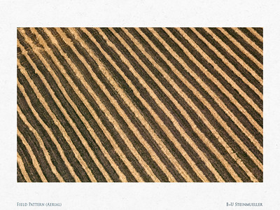 Field Pattern (Aerial)
