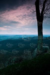 Virginia Series By Douglas Gehlsen