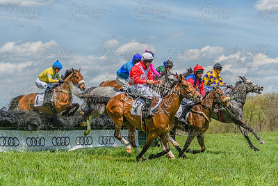Hurdle Race at the 2017 Loudoun Fairfax Point to Point