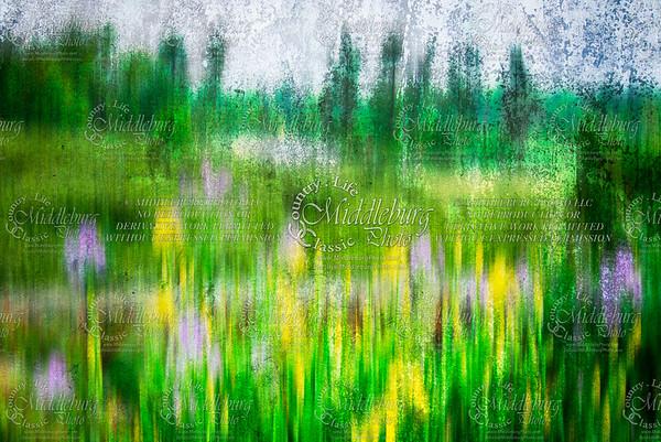 "30x20 Thin Wrap - ""Monet Study"""