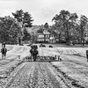Piedmont Fox Hounds at Welbourne