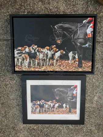 2 different views of this print, 8x12 matted and framed to 13x16 and 12x18 Canvas
