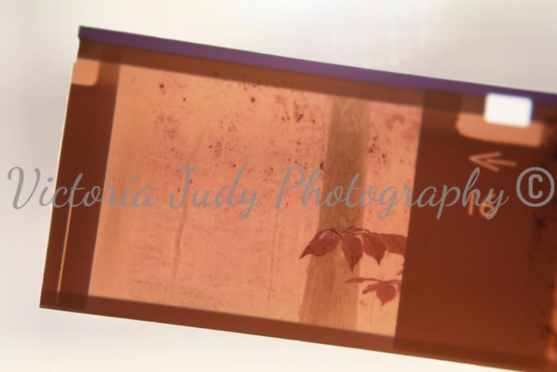 Day 28 - January 28, 2012
