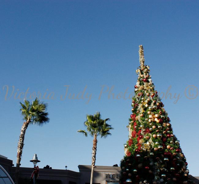 Day 326 - November 21, 2012
