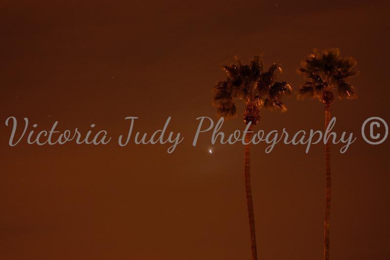 Day 50 - February 19, 2012