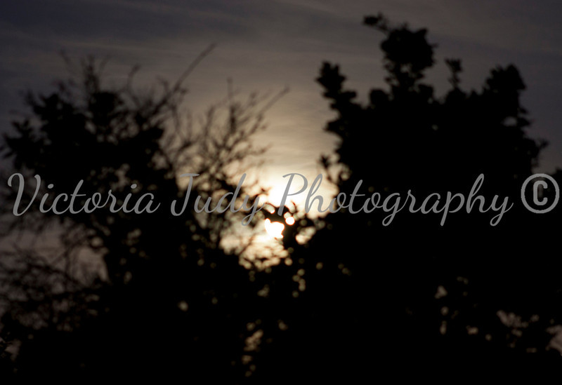 Day 304 - October 30, 2012