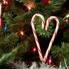 Day 347 - December 12, 2012