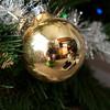 Day 339 - December 4, 2012