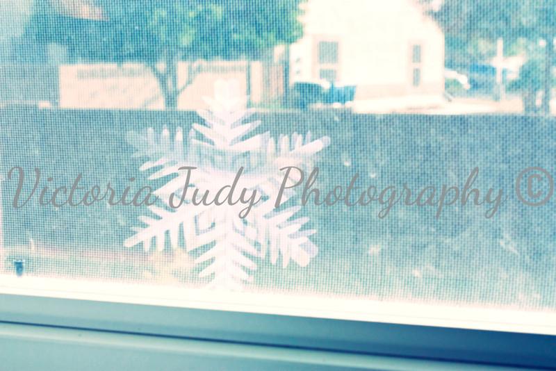 Day 335 - November 30, 2012