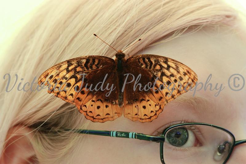 Lauren & Butterfly
