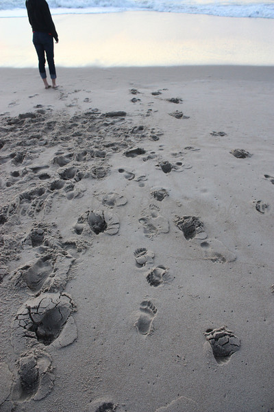 Ocean City, MD - Footprints - 2011<br /> <br /> Taken with a digital camera