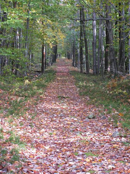 J.P. Saylor Trail, Pennsylvania - 2009