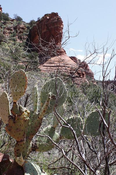 Fay Arch Trail - Sedona, AZ - April 2011