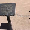 Sign on Main Street - Tombstone, Arizona - 2010